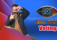 Bigg Boss Tamil Voting